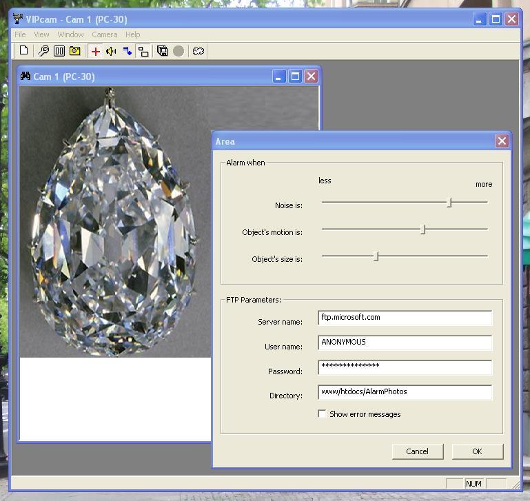 VIPcam Screen shot